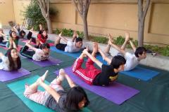 yoga,pranayama,meditation