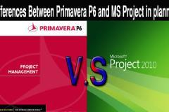 Primevera  and MSP