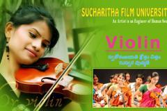 Karnataka violin