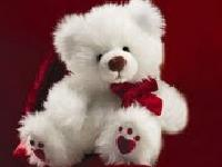 Soft Toy Making Classes in Chennai