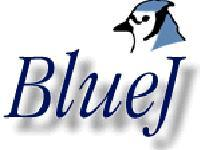Blue JAVA training for IX & X Students