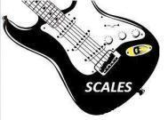 Scales Academy Of Music photo