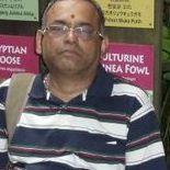Krishnamoorthi Balasubramanian Class 11 Tuition trainer in Chennai