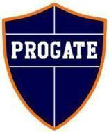 Progate Gate Coaching photo