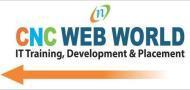 Cnc Web World Computer Institute photo