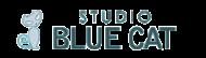 Studio Blue Cat photo