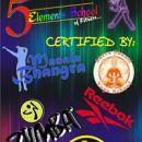 5elements school of fitness photo