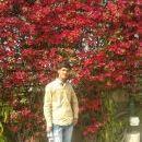 Rishabh Raj photo