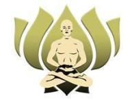 Indian Institute Of Yoga And Naturopathy photo