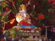 Sangeeta K. photo