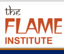 Flame Institute photo