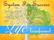 System For Success photo