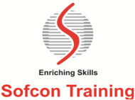 Sofcon Training photo