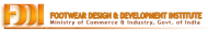 Footwear Design And Development photo