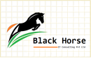 Black Horse It Consulting Pvt Ltd photo