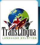 Translingua India photo