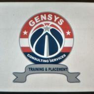 Gensys Consulting Services photo