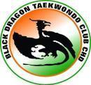 Black Dragon Taekwondo club photo