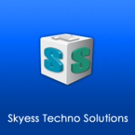 Skyess Techno Solutions photo