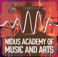 Nidus Academy of Music And Arts Drums institute in Ahmedabad