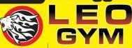 Leo Gym photo