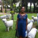 Jayanthi P. photo