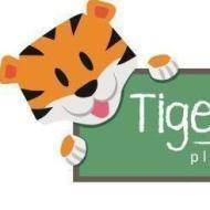 Tiger Tots Preschool photo