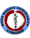 Kyokushin ki dojo photo