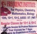 Frequency Institute photo