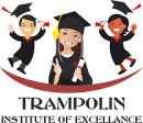 Trampolin institute of excellence photo