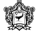 Dance Riders Academy photo