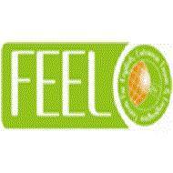 Feel Academy photo