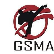 Global School Of Martial Arts photo