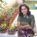 Meenakshi Jain photo