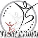 Fly Dance Institution photo