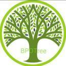 BPO Tree Consulting Services photo