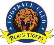 Black Tigers photo