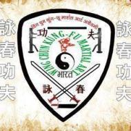 Wing Chun Kung Fu Martial Art Academy-india photo