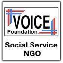 Voice Foundation picture