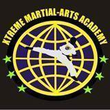 Chandru's Xtreme Martial Arts Academy photo
