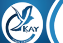 YKay Global Services photo