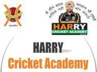 Harry Cricket Academy photo