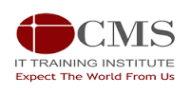 Cms It Institute photo