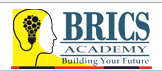 Brics Academy photo