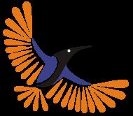 Sunbird Academy photo