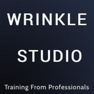 Wrinklestudio photo