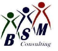Bsm Consulting photo