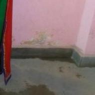 Shelly Gupta photo