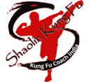 Shaolin Kung Fu Federation of India photo