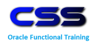 Css It Training Project Work institute in Hyderabad